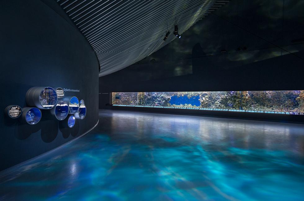 Bespoke Floor Provided For The Blue Planet Flowcrete Uk Ltd