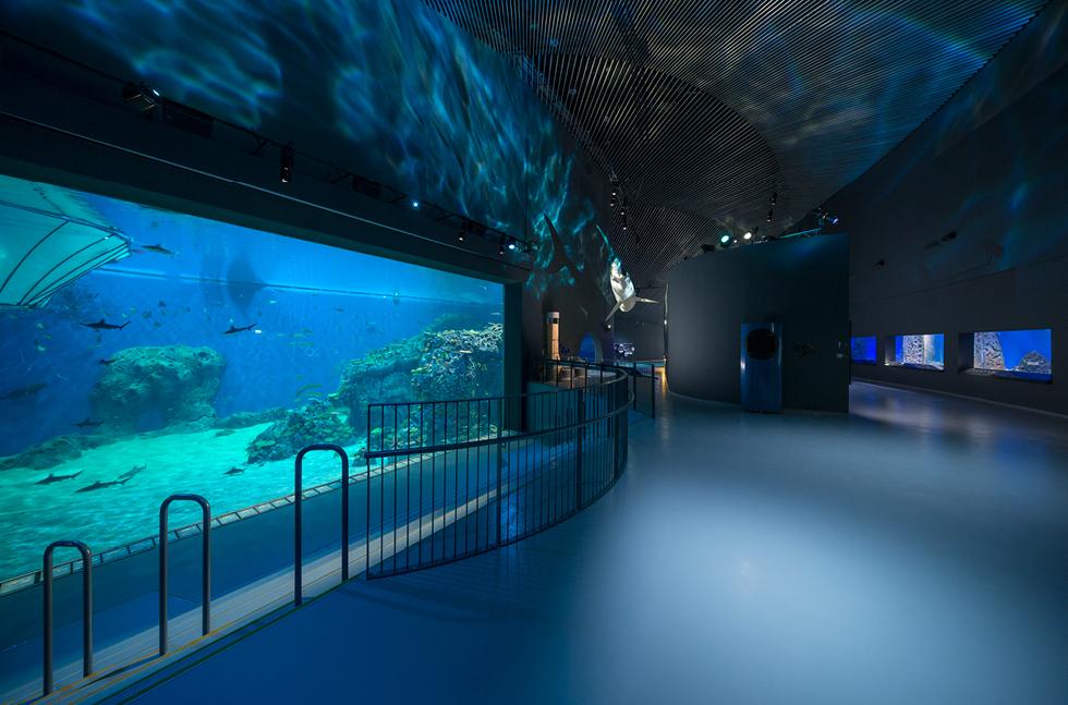 Bespoke floor provided for the blue planet flowcrete uk ltd for Floor aquarium