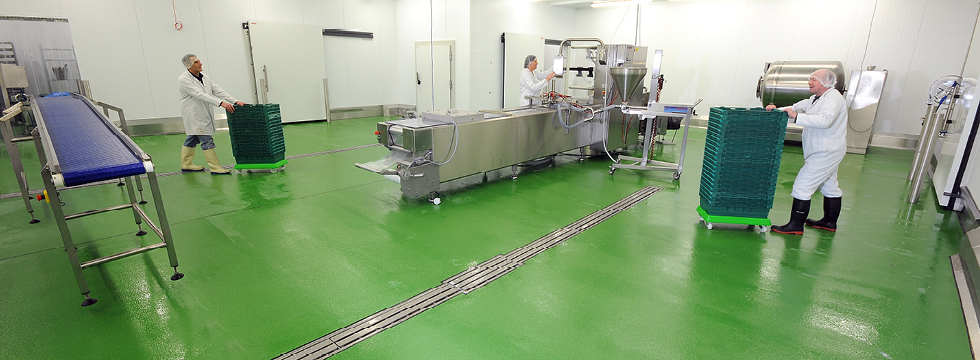 Food and Drink Manufacturing